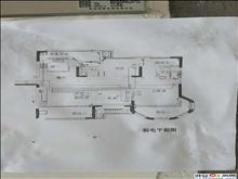 中南世纪城第 一 排 观景三房 户型方正 满五
