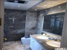 13层+地下室100平方 豪华装修 满5唯一