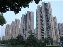 仁恒四季公园   3房2厅2卫  品牌家电家具