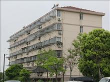 海兴新村   6层   精装修  1600月