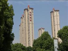 中南世纪锦城实景图(12)