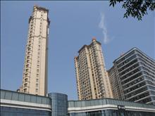 中南世纪锦城实景图(4)