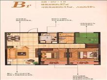 紫宸江湾户型图(4)