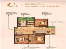 紫宸江湾户型图(3)