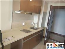 海派秀城 全新单身公寓 大量房源 平层 复式 1300起步