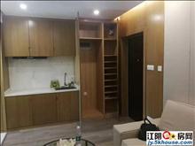 金辰国际精装修新房,高铁地铁附近