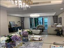 高新区豪华精装修三房,龙庭一路之隔首付28万起,商业核心位置