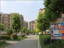 红日金城实景图(21)