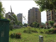 红日金城实景图(7)