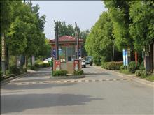 红日金城实景图(3)