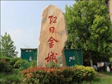 红日金城实景图(2)