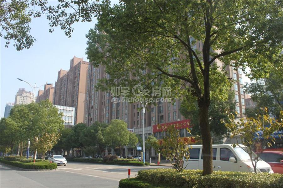 086金茂国际电梯11层143平米前后阳台精装145.8万