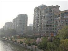 蓝湾景天实景图(2)