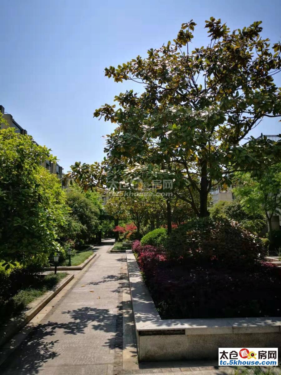 单价才1.3万的别墅,大别墅低总价,南洋壹号公馆别墅,328平米, 位于小区,毛坯