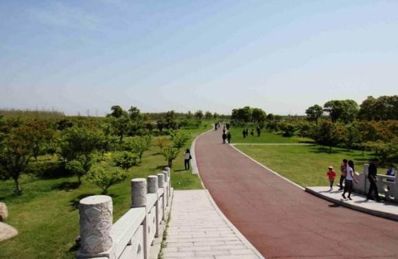 好消息!占地300多亩的太仓市民公园下月开建