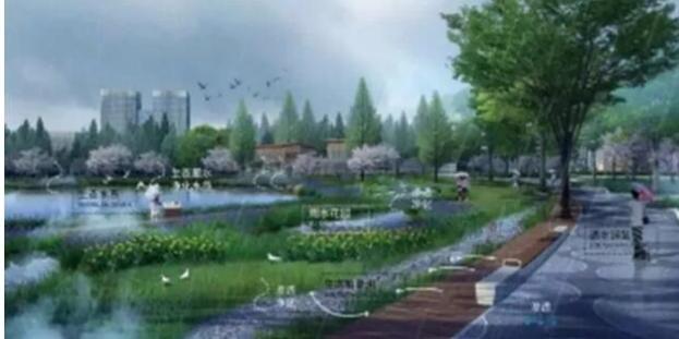 太仓市民公园最新消息来啦,建成后将会是这样