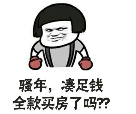 中国人为什么爱炒房?中国人哪来这么多钱炒房?