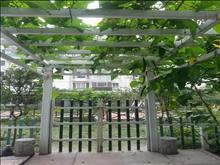 龙城市广场 365万 4室2厅3卫 精装修 带50平方花园下叠加别墅