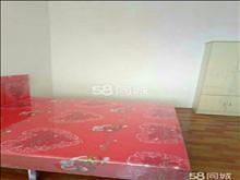 稀缺好房型,滨江名都 1500元/月 2室2厅1卫 简单装修 ,先到先得