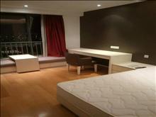莱茵城市广场 1600元/月 1室1厅1卫 精装修 ,好房百闻不如一见!