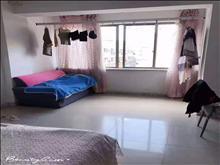 五洋广场公寓 1300元/月 1室1厅1卫 精装修 ,电梯房!
