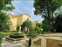 西北工业大学边别墅,民水民电,可买,环境优美,周围配套成熟离上海又近