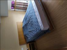 急租帝景 1室精装修 1600元包物业 看房方便 拎包入住 手慢无