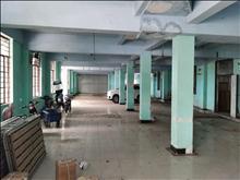 浏家港一楼仓库出租700平独门独院