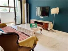 天琴湾 1000元/月 1室1厅1卫,1室1厅1卫 豪华装修 ,正规好房型出租