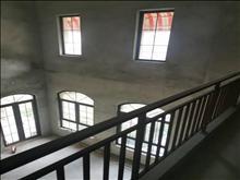 出售 向东岛独栋别墅 560平 毛坯 800万 院子