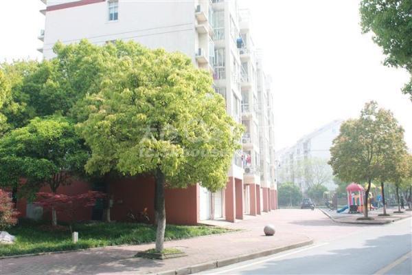 黄金三学区世纪苑 249万 3室2厅2卫 精装修 ,潜力超低价