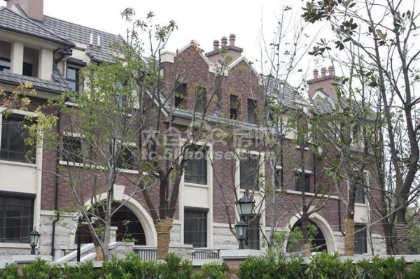 世纪英伦上叠加  边套,便宜出售3室2厅2卫360万