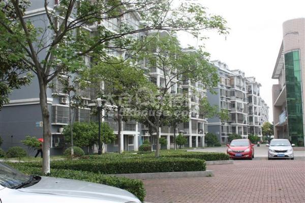 实验中学 洋沙六村 110万 2室1厅1卫 精装修 ,好房子!