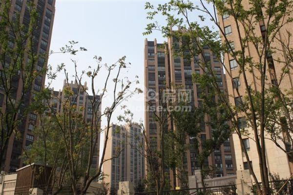 绿地城 95+15平 3室2厅1卫 精装修  满2年  188万