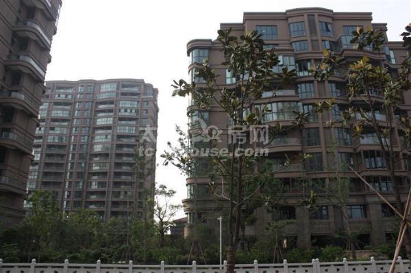浙建太和丽都复式114+60 368万 3室2厅2卫 豪华装修拎包入住