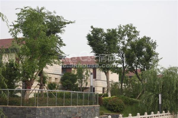 上海公馆二期 产证260平毛坯420万 带车位+30平储藏室