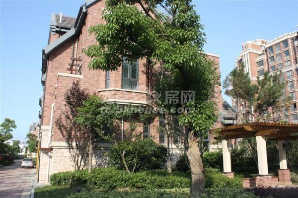 高成上海假日二期 1500元/月 1室1厅1卫 精装修