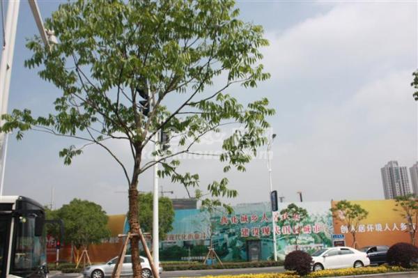 万达广场旁 全南户型 送中央空调 总价低