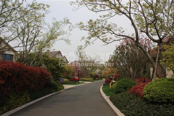 的地段!!向东岛花园 700万 5室2厅5卫 毛坯