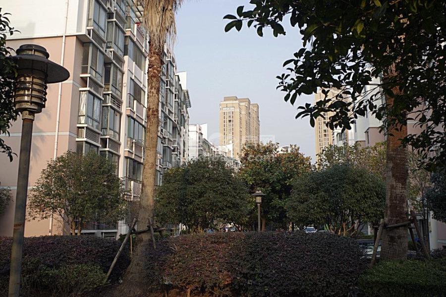 华源上海城 200万 3室2厅1卫 毛坯 业主急售, 高性价比!