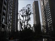 上海公馆二期实景图(12)