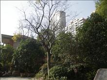上海公馆二期实景图(4)