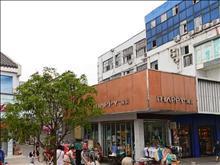 利泰新村实景图(1)