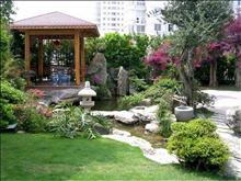 震泽生态湖边别墅 无污染用地 首付100多万即可入住 超大后花园