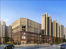 嘉乐城 地铁17号线延伸段 大型商业综合体 乐购超市旁  三大公园环绕