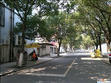 震泽镇南新村 69平方实际面积78平方 3室学期房 楼层佳