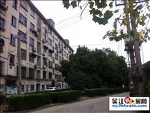 实验初中学区房精装修多层四楼送阁楼40平产证满二年