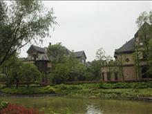 金科廊桥水岸实景图(31)