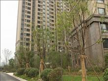 绿地太湖城实景图(7)