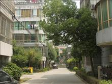 振泰小区实景图(33)